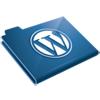 Common WordPress Functions