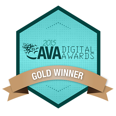 AVA Award-Winning Web Design Agency