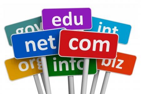 Domain Registrar vs. Domain Hosting