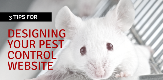 designing your pest control website