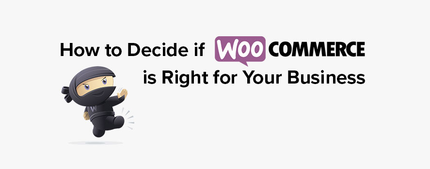 How to decide if WooCommerce is right for your business - TheeDesige ecommerce development and marketing