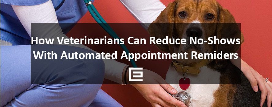 How Veterinarians Can reduce no-shows with automated email reminders - TheeDesign