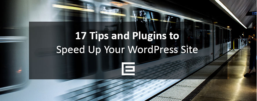 17 Tips and Plugins to Speed Up Your WordPress Site - TheeDesign Web Design Agency Raleigh
