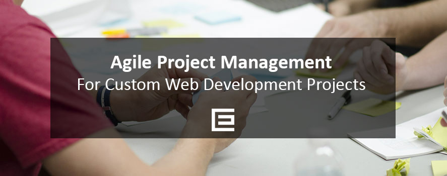 Agile Project Management for Custom Web Development Projects - TheeDesign Raleigh